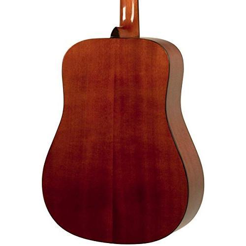 Rogue Acoustic Mahogany